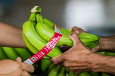 Looking for #FairTrade Certified fruits and vegetables? This handy shopping guide will help you find them!