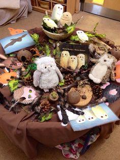 Owl babies tuff spot More Owl Activities, Nursery Activities, Infant Activities, Autumn Eyfs Activities, Autumn Activities For Babies, Outdoor Activities, Tuff Spot, Baby Owls, Owl Babies