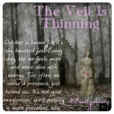 """The Veil is Thinning """"October is known for its sly, haunted feel. Every day, the air feels more and more alive with energy. Too often, we sense a presence -just behind us . It's not your imagination; spirit activity is more prevalent, now. Wiccan Spells, Witchcraft, Wiccan Witch, Easy Spells, Magick Book, Healing Spells, Samhain Halloween, Halloween Ideas, Happy Halloween"""