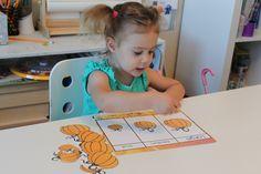 Different preschool pumpkin activities for fine motor skills, counting, sorting, larger to smaller, etc.