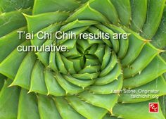 Quote by Justin Stone, Originator of the moving meditation T'ai Chi Chih: Find more info at www.taichichih.org Fibonacci Sequence In Nature, Fibonacci Spiral, Fibonacci Number, Serie Fibonacci, Terra Verde, Spirals In Nature, In Natura, Patterns In Nature, Nature Pattern