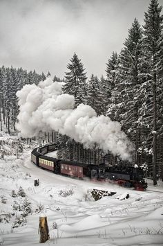Tren recorriendo la nieve en la Selva Negra, Alemania. ¡No dejes de viajar!