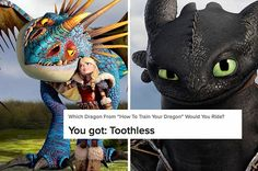 Not everyone can get Toothless.