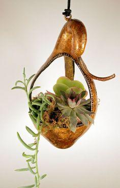 Gourd bird feeder or succulent and cactus hanging by EricsGourdArt
