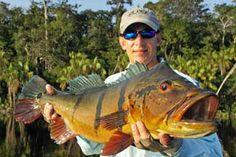 River Plate Anglers peacock bass fishing.