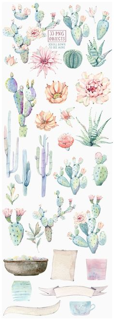 CACTUSES again and again by Lemaris on @creativemarket #watercolorarts