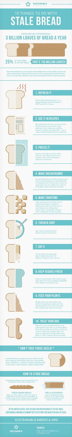 10 Clever Ways To Reuse Stale Bread [INFOGRAPHIC] |Foodbeast