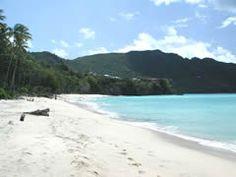 Princess Margaret Beach, Bequia.......best shelling beach in the Caribbean!
