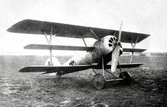 Pfalz DR1 1918