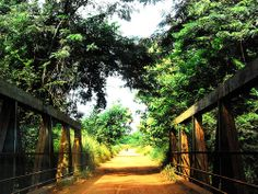 Kpalime road (Togo) by Kejoyas, via Flickr