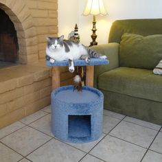 One or two cats can easily enjoy the New Cat Condos Premier 24 in. Cat Sleeper together. This cat sleeper features a large opening and raised edges. Modern Cat Furniture, Pet Furniture, Furniture Deals, Litter Box Enclosure, Cat Perch, Cat Cave, Wood Post, Cat Condo, Cat Scratching