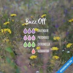 Buzz Off - Essential Oil Diffuser Blend