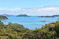 Wishing we were still in this amazing part of the world - the Bay of Islands #NewZealand. This is the view from our family holiday home - and yes that is a great big superyacht! @purenewzealand - @theglobalcouple on Instagram