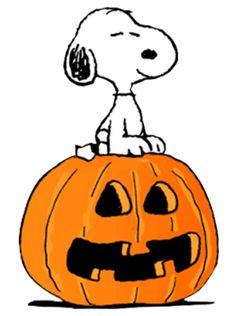 56 best charlie brown great pumpkin images on pinterest charlie