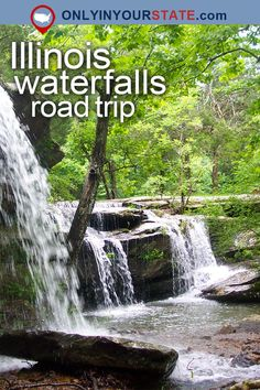 Travel | Illinois | Attractions | USA | Things To Do | Road Trips | Natural Beauty | Waterfalls | Places To Visit | Hidden Gems | Outdoors | Adventure | Explore | Hiking | Waterfalls Road Trip | Illinois Waterfalls | Forests | State Parks | Summer