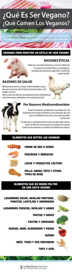 10 Ideas De Vegan Frases Veganas Frases Vegetarianas Mundo Vegano