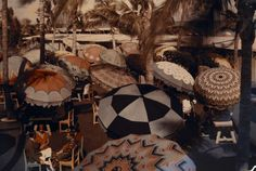 See a photo of Miami Beach, Florida, by Clifton R. Adams, from National Geographic. National Geographic Archives, Deco Restaurant, Colorful Umbrellas, Patio Umbrellas, Cherbourg, Miss Moss, Parasol, Picture Captions, Rare Photos