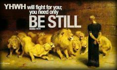 YHWH WILL FIGHT FOR YOU; YOU ONLY NEED TO BE STILL!  Praise His Wonderful NAME