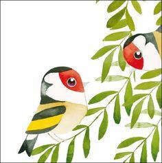 Matt Sewell Birds 389238