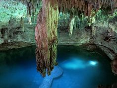 Cenote Suytun, cancun cenotes, cenotes cancun, cenotes en cancun, cenote tour, gran cenote, cenote ik kil