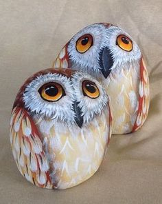 Best Animal Painted Rocks for Beginner Rock Painters Pebble Painting, Tole Painting, Pebble Art, Stone Crafts, Rock Crafts, Owl Rocks, Hand Painted Rocks, Painted Stones, Painted Owls