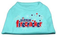 Little Firecracker Screen Print Shirts Aqua M (12)
