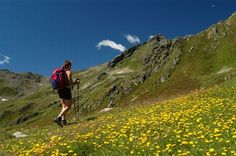Trekking, Val di Sole