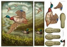 Take Flight on Craftsuprint designed by Gillian Hutchinson - Mallard themed card front with decoupage, bookmark