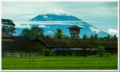 Cycle tour in Bali