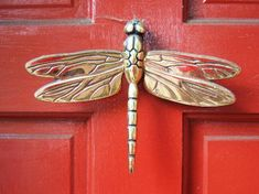 Dragonfly Door Detail, Georgetown:   Washington DC