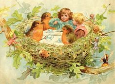 Robins & fairies at Tea in Nest-Sweet image courtesy of Graphics Fairy