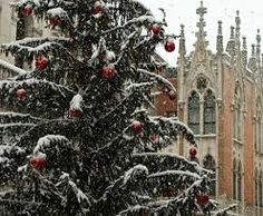 snow in paduaitaly - Google Search