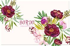 Peony Bordeaux. Watercolor Clip Art. by LABFcreations on @creativemarket
