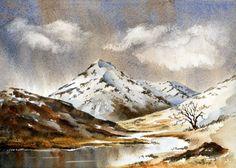 david bellamy artist | David Bellamy Artist