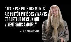 Top 10 des meilleures citations de Dumbledore, le directeur qu'on aurait tous aimé avoir | Topito