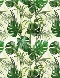 Plants by verogobet