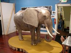Charm City Cakes Most Outrageous Cakes GIANT ELEPHANT CAKE!!