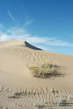 Sand Dunes - Where to Film in Yuma - Yuma Film Commission - Assistance for Anyone Filming in Yuma, Arizona