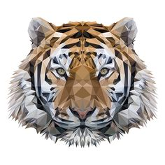 Tiger Low Poly - Indyvisual Design Lab.