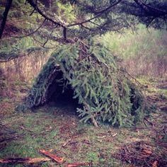 Shelter, bushcraft