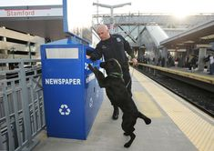 Today in Stamford history: April 16  ||  Buy photo Stamford Police Officer Erin Trew and his black Labrador retriever, Riley, inspect a newspaper recycling receptacle at the Stamford Train Station on April 16, 2013. The Boston Marathon bombing the day before had put the nation's police forces on high alert. less Stamford Police Officer Erin Trew and his black Labrador retriever, Riley, inspect a https://www.stamfordadvocate.com/local/article/Today-in-Stamford-history-April-16-12835217.php