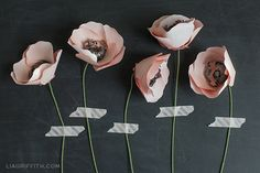 Paper Anemone Flowers