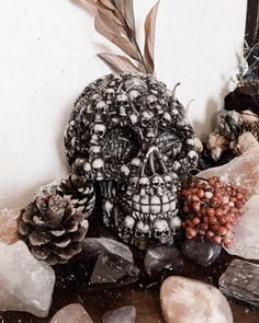 His name is Cedric  #crystals #skull #witch
