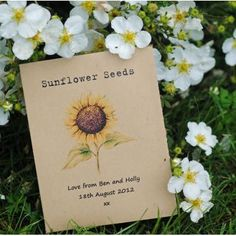Sunflower Rustic Seed Packet