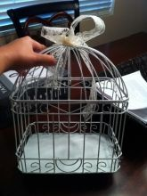Card Carriage (holder) Not exactly a birdcage, but very cute! Recycle Your Wedding, Bird Cage, Wedding Decorations, Wedding Ideas, Reception, Marriage, Cards, Weddings, Products