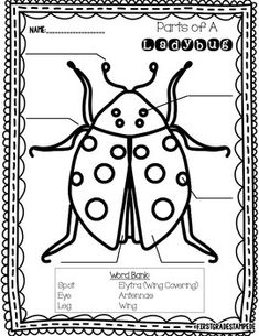 Learning about ladybugs this Spring?  Enjoy using this free resource with your kiddos to label the parts of a ladybug.  This resource is perfect to tie in with your ladybug theme during literacy or science!If you download this resource, please leave feedback!