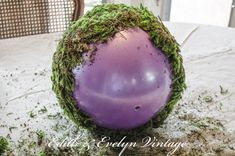 "Genius!! Dollar store ball, 12"", cover with moss and you have a beautiful, large moss ball"
