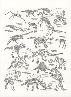 "Dinosaurs at The American Museum of Natural History  by Jason Polan $60 - (for Rich sometime - perhaps) 14""x11"": 185 of 500 available"