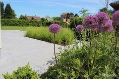 Aangelegde tuinen door tuinonderneming Monbaliu - Moderne tuin met speelse oprit en ruime terrasen Sidewalk, Plants, Side Walkway, Walkway, Plant, Walkways, Planets, Pavement