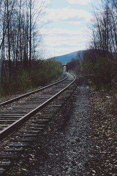 tumhblr: desparate: Underwood (by Emily Boyer Photography) nature / vintage Arcadia Bay, Night In The Wood, Over The Garden Wall, Life Is Strange, Train Tracks, Story Inspiration, Stranger Things, Railroad Tracks, Nature Photography